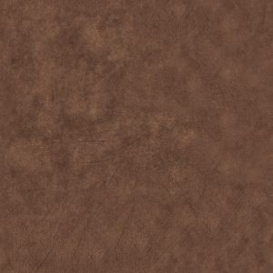 Texas 1234 Camel Brown